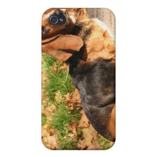 Sitting Basset Hound  iPhone Case iPhone 4/4S Cases