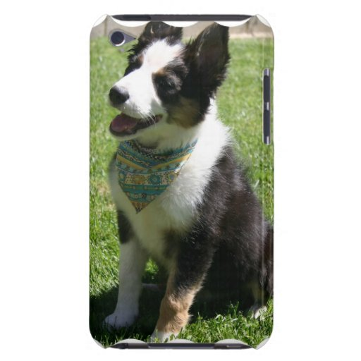 Sitting Border Collie iTouch Case iPod Touch Case-Mate Case