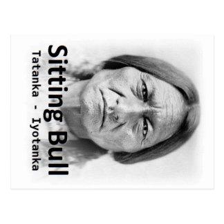 Sitting Bull, Tatanka Iyotanka, Native American Postcard