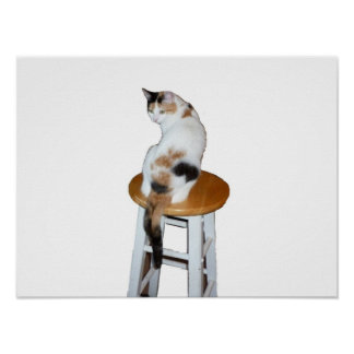 Sitting Calico Cat Poster