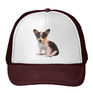 Sitting Cardigan Welsh Corgi Puppy Trucker Hat