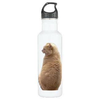 Sitting Cat 24oz Water Bottle