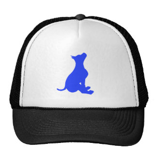 Sitting Dog Trucker Hat