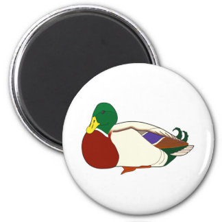 Sitting Duck Magnet