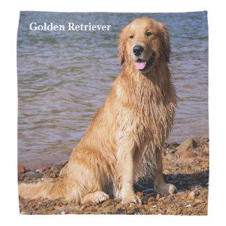 Sitting Golden Retriever Bandana