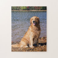 Sitting Golden Retriever Jigsaw Puzzle
