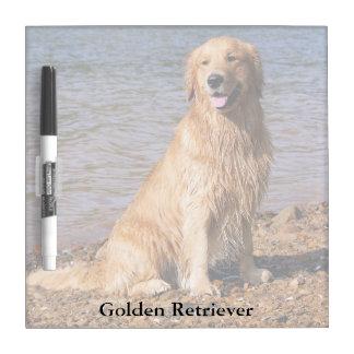 Sitting Golden Retriever Square Dry Erase Board