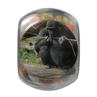 Sitting Gorilla Jelly Belly Candy Jars