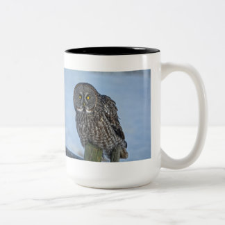 Sitting Great Gray Owl and Snow Wildlife Raptor Two-Tone Coffee Mug