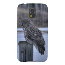 Sitting Great Gray Owl Wildlife Photo Portrait III Galaxy S5 Case