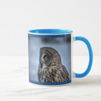 Sitting Great Grey Owl & Snow Wildlife Raptor Mug