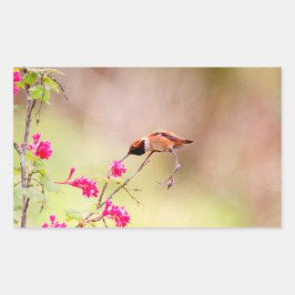 Sitting Hummingbird Sipping Flower Nectar Rectangular Sticker
