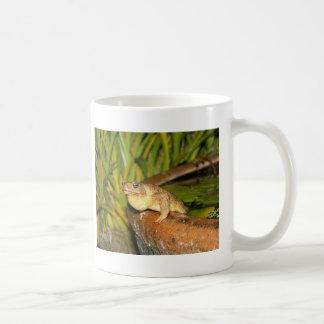sitting in peace coffee mug