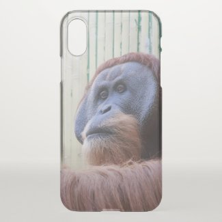 Sitting Orang Utan - iPhone X Case