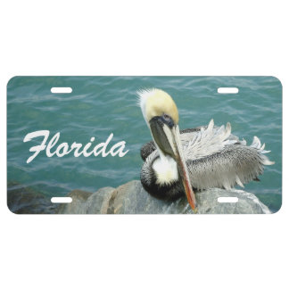 Sitting Pelican Custom License Plate