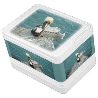 Sitting Pelican Drink Cooler