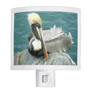 Sitting Pelican Night Light
