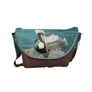 Sitting Pelican Small Small Messenger Bag