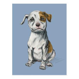Sitting Pit Bull Puppy Drawing Postcard