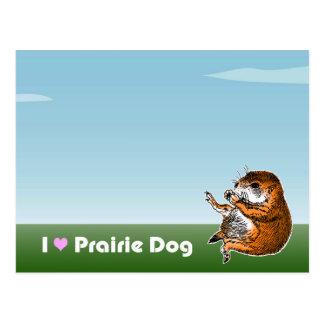 sitting prairie dog postcard