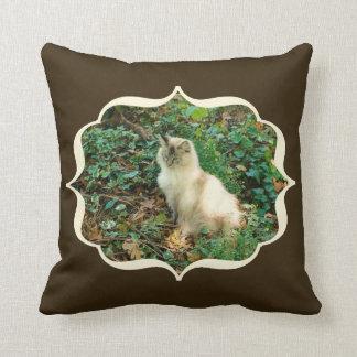 Sitting Pretty Cat Pillow