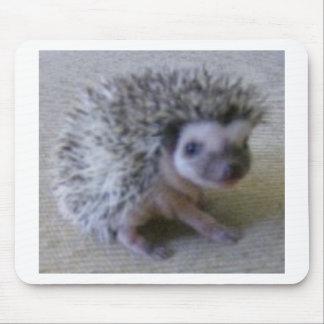 Sitting pretty hedgehog mouse pad