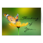 Sitting Pretty Little Butterfly on a Flower Greeting Card