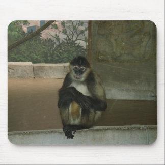 Sitting Pretty Monkey Mousepad