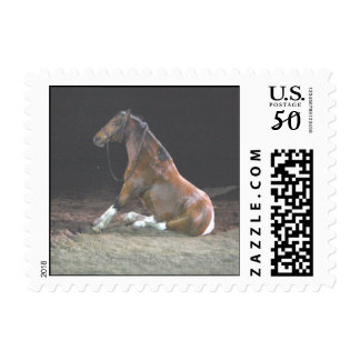Sitting Pretty - postage stamps