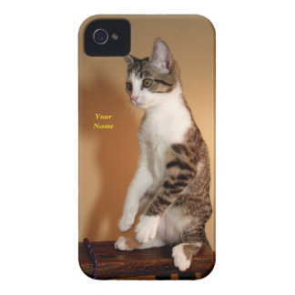 Sitting Pretty Upright Cat iPhone 4 Case