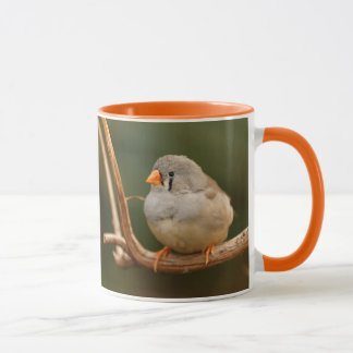 Sitting Pretty: Zebra Finch Mug
