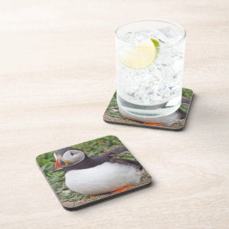 Sitting Puffin Beverage Coaster