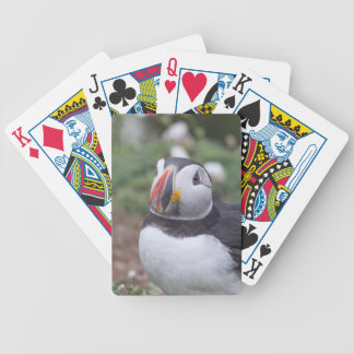 Sitting Puffin Bicycle Playing Cards