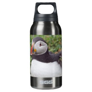 Sitting Puffin Thermos Bottle