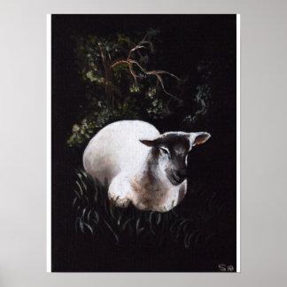 Sitting Sheep Print