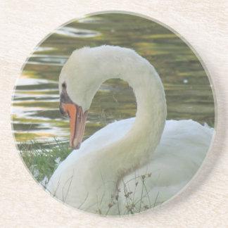 Sitting Swan Coaster