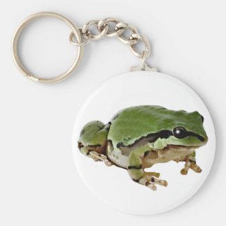 Sitting Tree Frog Keychain
