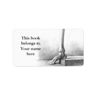 Sitting vintage skeleton thinking bookplate