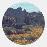 Situación del desierto pegatina redonda