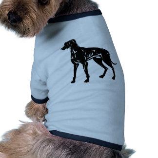 situación del perro del galgo ropa de perros