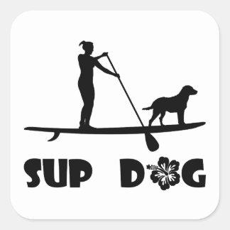 Situación del perro del SORBO Pegatina Cuadradas