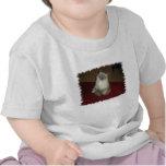 Situps del gato camisetas