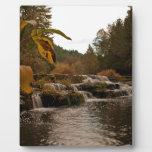 Siuslaw baja otoño placas de madera
