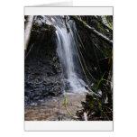 Siuslaw Falls Greeting Card