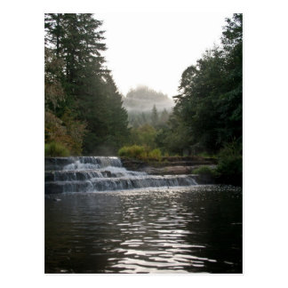Siuslaw Falls Postcard