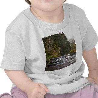 Siuslaw Falls Summer T-shirts