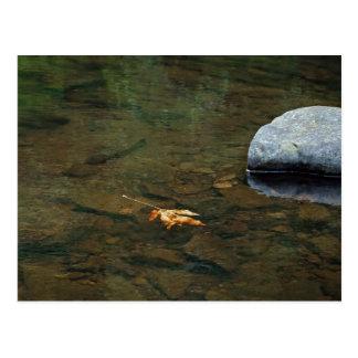 Siuslaw River, Oregon Postcard