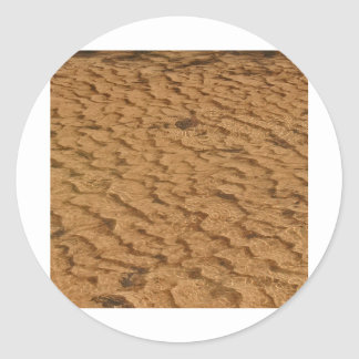 Siuslaw Sand Sticker