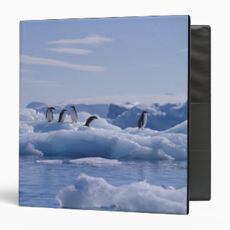 Six Adelie Penguins Pygoscelis adeliae) on an 3 Ring Binder
