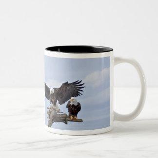 Six Bald Eagles (Haliaeetus leucocephalus) Two-Tone Coffee Mug